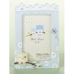 Blue Owl Photo Frame