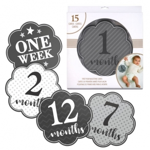 Grey Monthly Baby Milestone Photo Cards