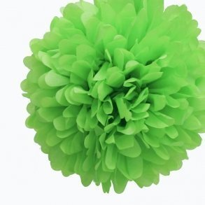 Kiwi Green Tissue Pom Poms - Pack of 4