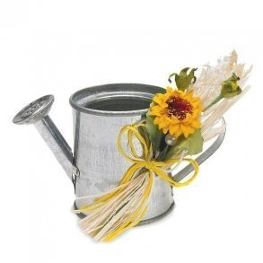 Miniature Metal Watering Cans