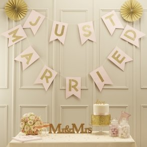 Pale Pink & Gold Just Married Bunting