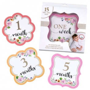 Pink Floral Monthly Baby Milestone Photo Cards
