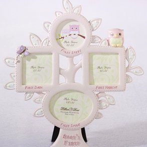 Pink Owl Baby's First Year Photo Frame