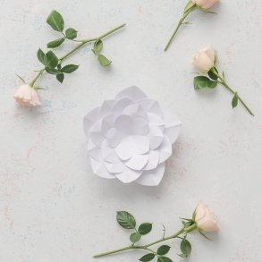 Small DIY Paper Apple Blossom Decor Flower White