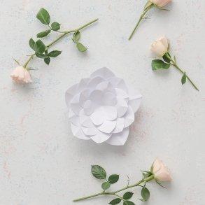 Small DIY Paper Apple Blossom Decor Flower White