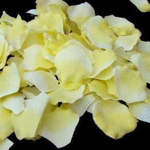 Yellow Silk Rose Petals - 100 Petals