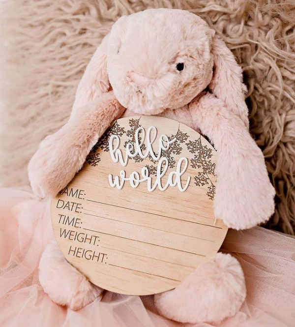 Floral 3D Hello World Baby Announcement Plaque