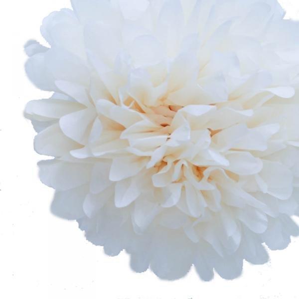 Ivory Tissue Pom Poms - Pack of 4