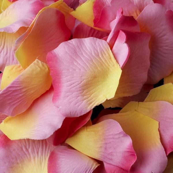 Pink & Yellow Silk Rose Petals - 100 Petals